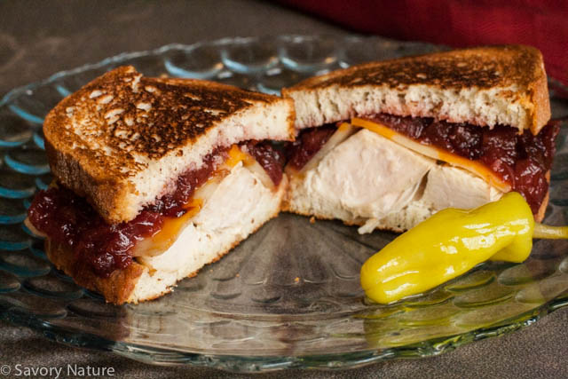 Grilled Turkey Sandwiches with Cranberry Apple Chutney
