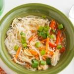 Shirataki Noodle Bowls