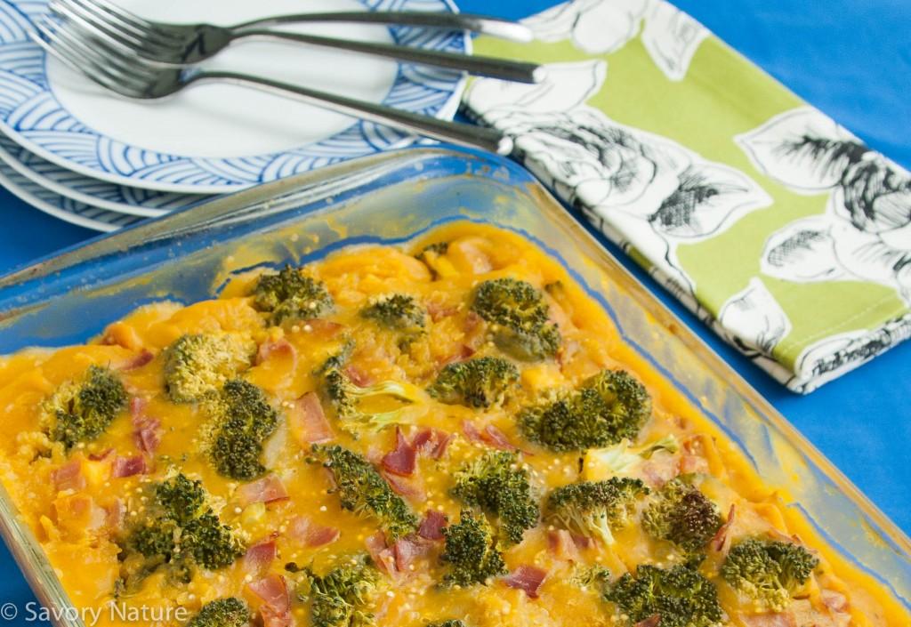 Chicken Broccoli Quinoa Squash Casserole