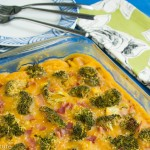 Chicken Broccoli Quinoa Squash Casserole