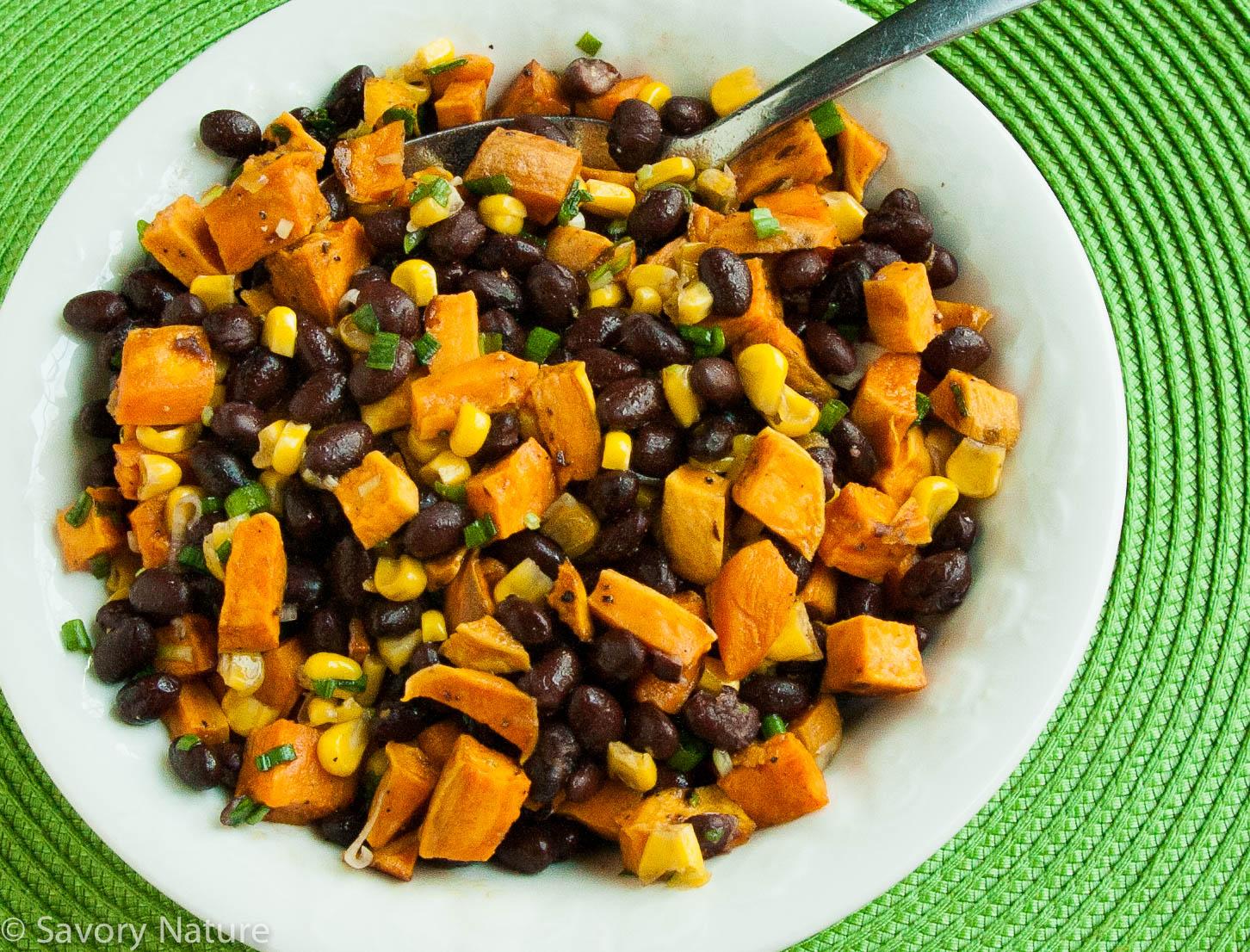 Sweet Potato, Black Bean and Corn Salad - Savory Nature